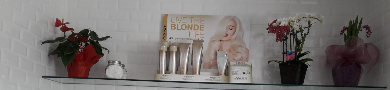 Blow Dry Hair Plus Official Website